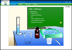 Virtual lab screenshot