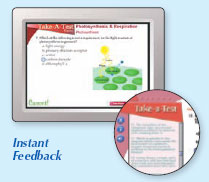 Example of instant feedback